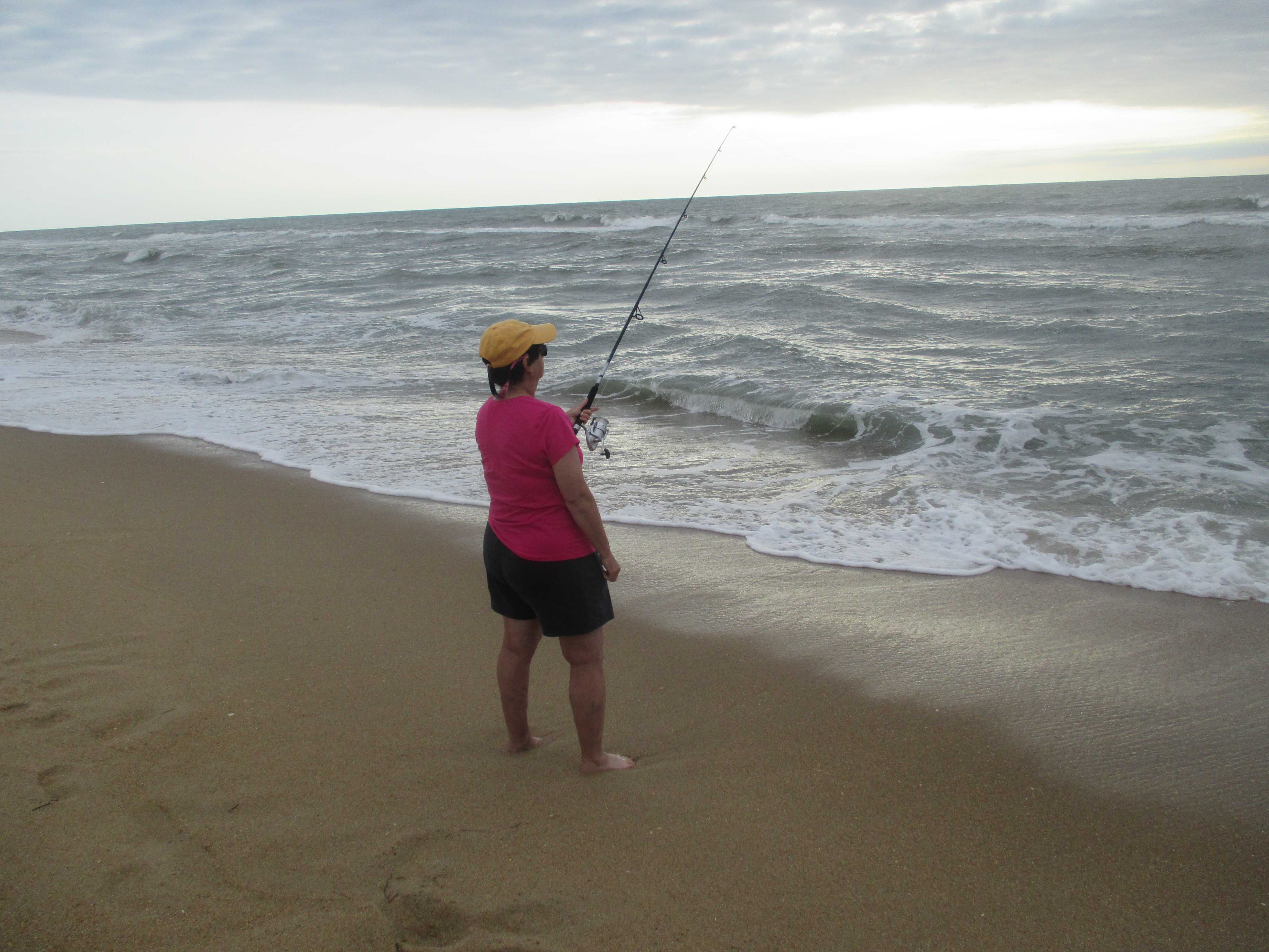 Ncsaltaire news from outer banks nc for Surf fishing outer banks